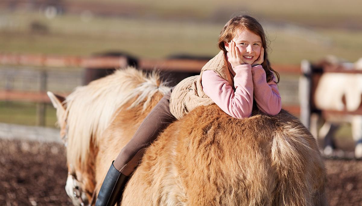 Pferdehalterunfall