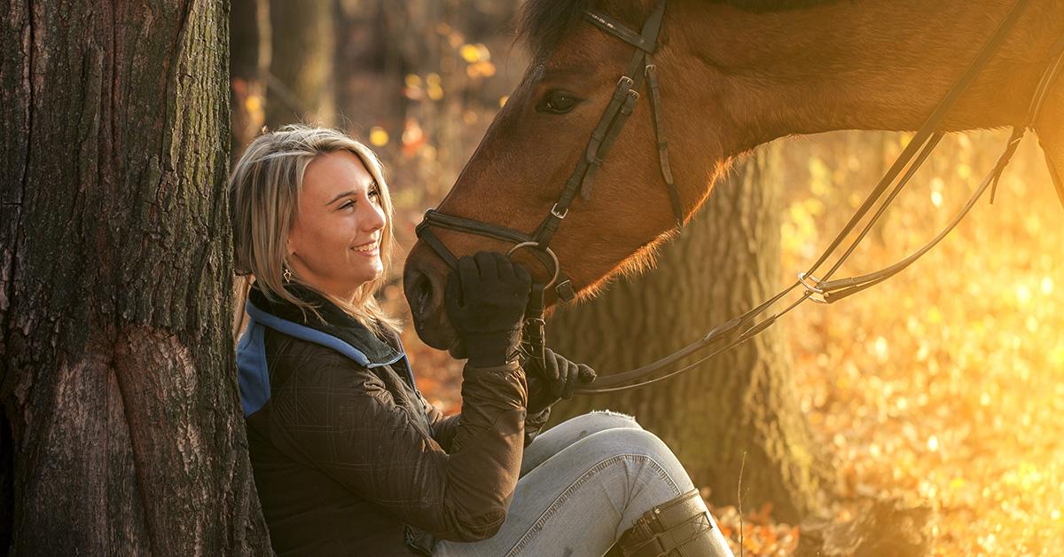 Pferde-OP-Versicherung