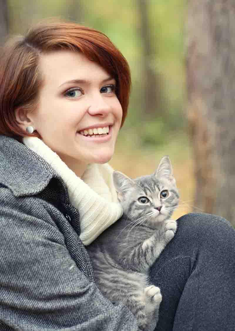 Katzen-OP-Versicherung_web